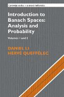 Introduction to Banach Spaces: Analysis and Probability