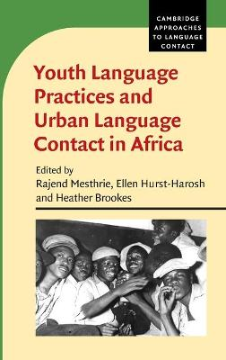 Youth Language Practices and Urban Language Contact in Africa