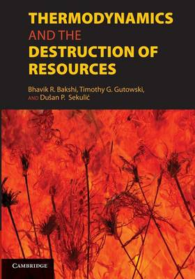 Thermodynamics and the Destruction of Resources