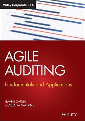 Agile Auditing