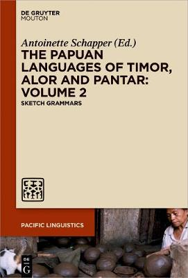 The Papuan Languages of Timor, Alor and Pantar. Volume 2