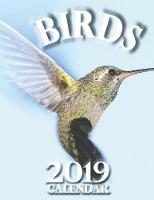 Birds 2019 Calendar (UK Edition)