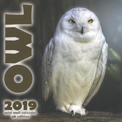 The Owl 2019 Mini Wall Calendar (UK Edition)