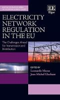 Electricity Network Regulation in the Eu