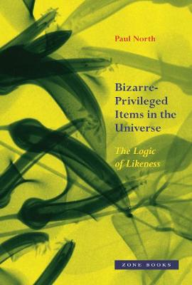 Bizarre-Privileged Items in the Universe - The Logic of Likeness
