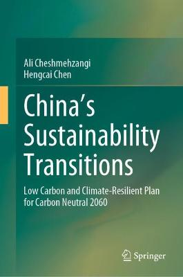 China's Sustainability Transitions